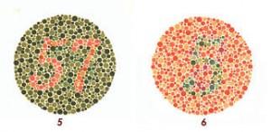 I principali test visivi - Tavole di distribuzione normale ...