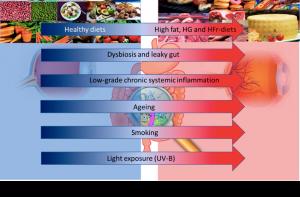 Dieta e microbioma intestinale