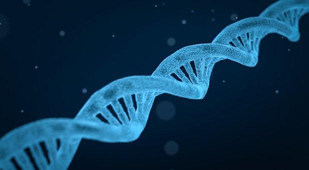 La distrofia cristallina di Bietti è una malattia genetica